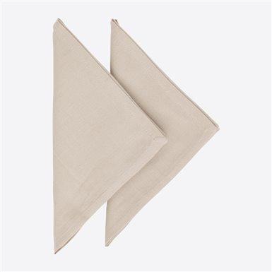 Set 2 napkins - Lurex